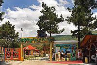 Сафари-парк в Геленджике. Вход