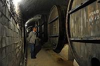 На экскурсии по подвалам Саук-Дере